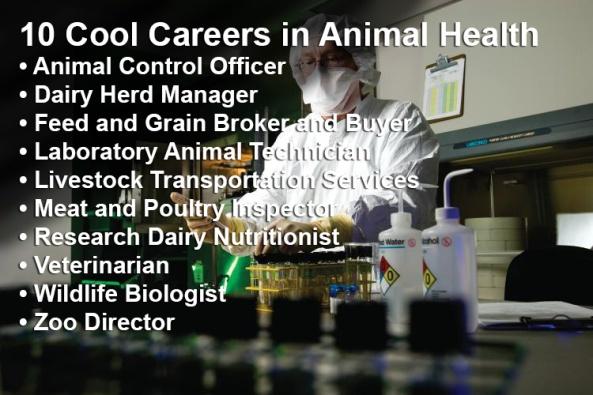 animalhealth